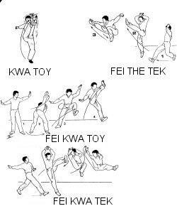 Tao for Kung fu technique de base pdf